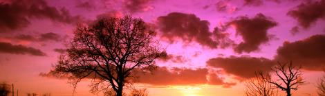 ALS JIJ HET PARADIJS WENST BINNEN TE GAAN, LEER DAN DE TAWHIED (EENHEID VAN ALLAH)!